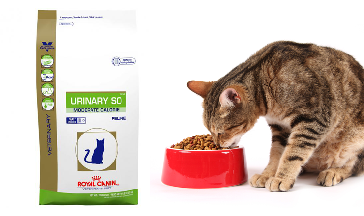 Urinary Royal Canin