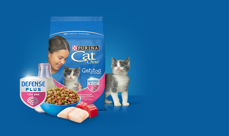 Ingredientes Purina Cat Chow
